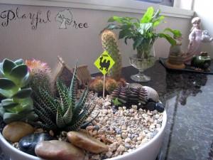 Tabletop Garden - Mini Cactus Garden
